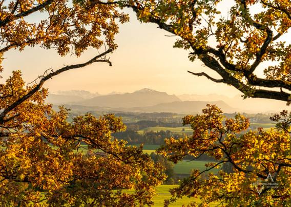 Herbstlicher Blick ins Allgäu