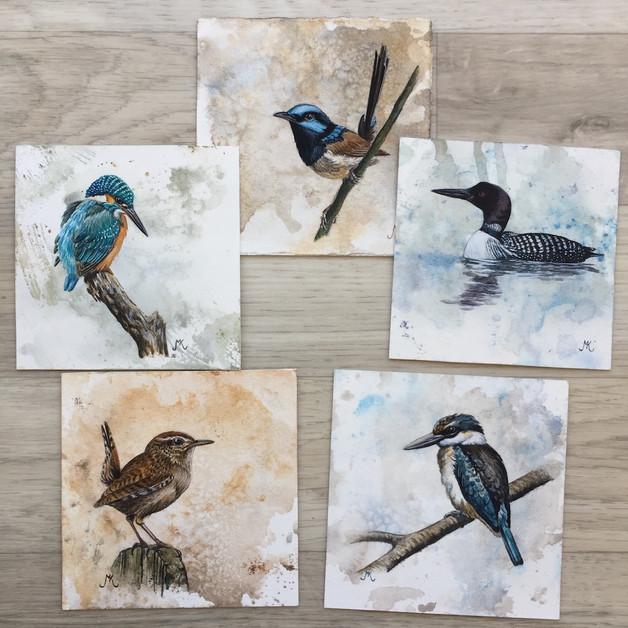 Birds in watercolour.
