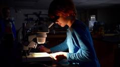 Fluorescent Microscopy/Cell Culture