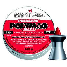 PolymagShort177_01_2.jpg