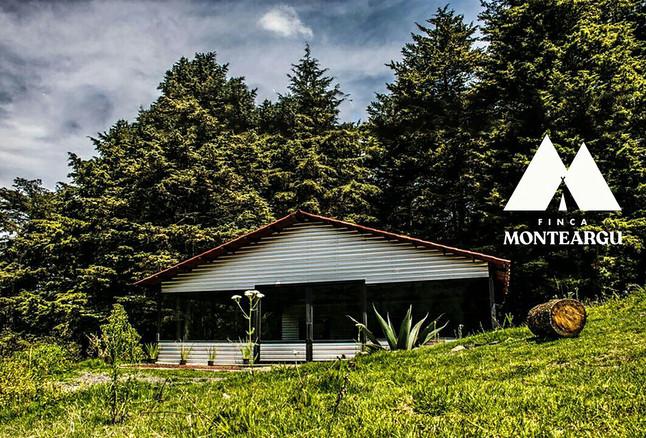 Monte Argu