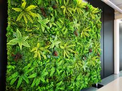 Green Wall setup