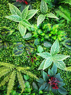 Green wall detail