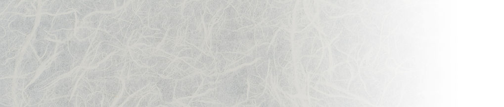 fading_ricepaper.jpg