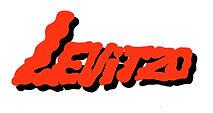 2020 Levitzo Logo jpg.jpg