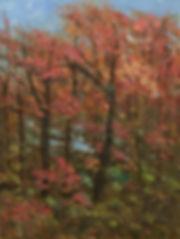 Autumn Tree-20 x16 oil.jpg