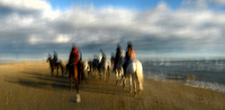 Promenade equestre en bord de mer