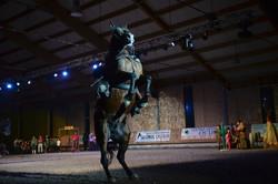 Salon du Cheval - Evening event