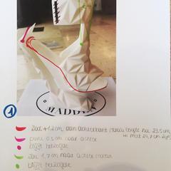 Concept Shoe 01 3D print