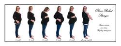 Pregnancy Timeline 2
