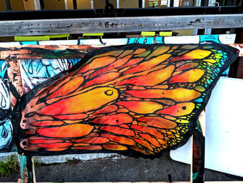 Butterfly Wings for Zoe Jakes