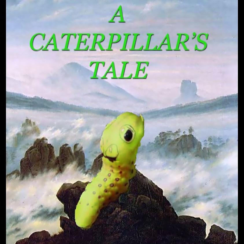 A Caterpillar's Tale: Create-A-Story | Go