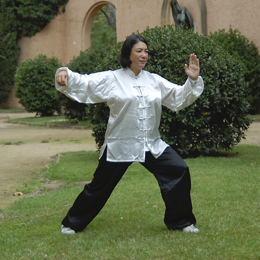 Smooth Moves: Introduction to Tai Chi   Isabelle Naud