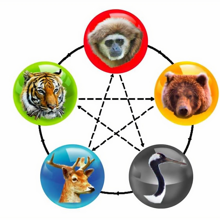 Qi Gong - 5 Animals (Isabelle)