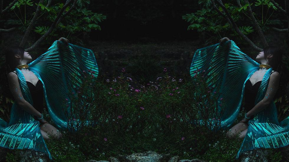bg 01.jpg