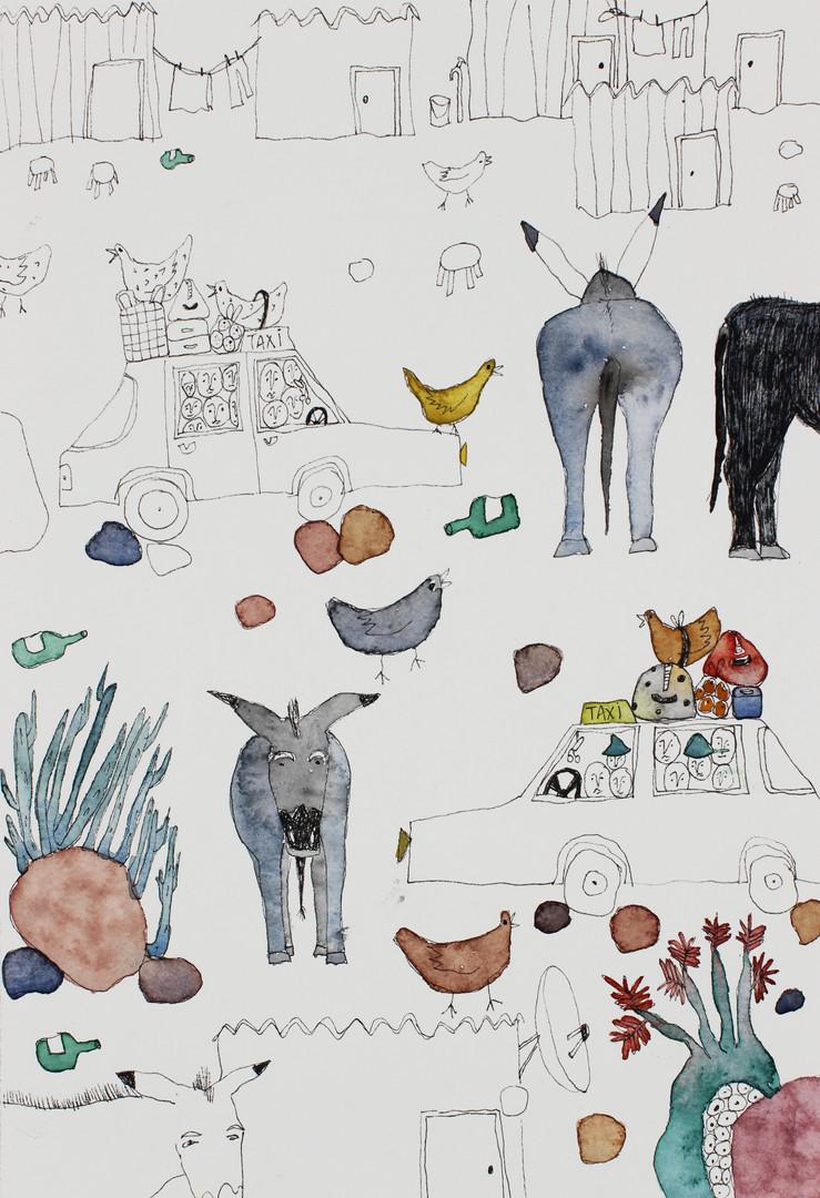 Donkeys in Wamboland