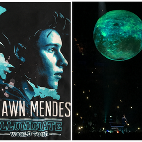 SHAWN MENDES • ILLUMINATE WORLD TOUR 2017 Featuring James TW - Meeting Shawn's Mum & Family