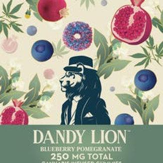 DANDY LION 250mg/10 PACK OTD