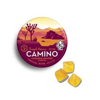 Kiva Camino Gummies 100mg