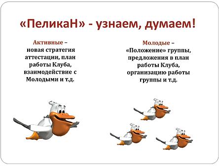 СБОР2.png