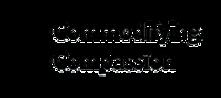 CoCo logo.webp