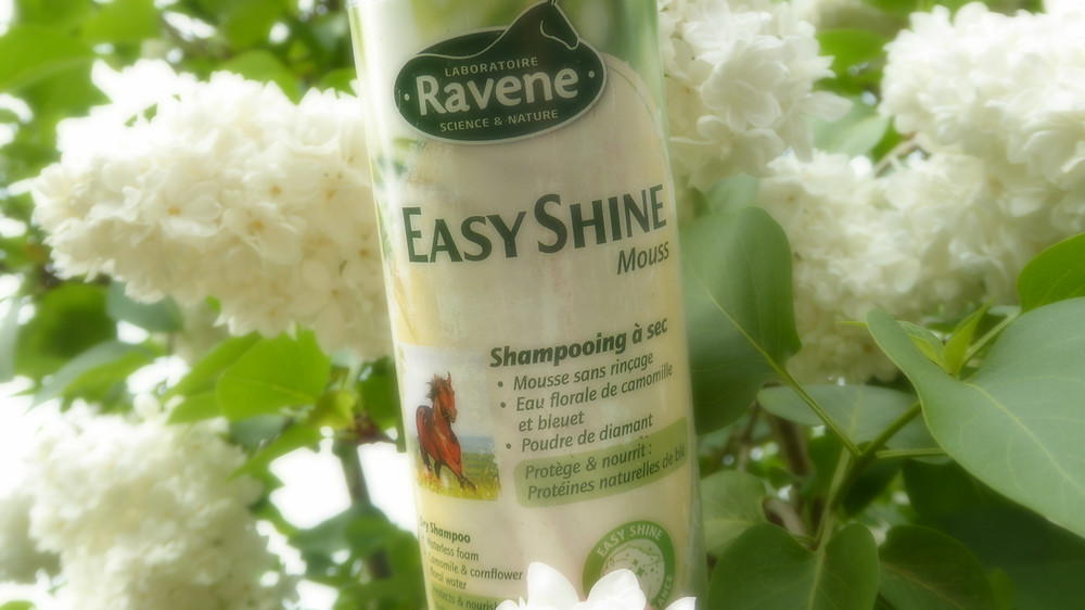 easy-shine-mouss