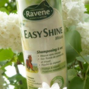 J'ai testé Easy Shine mouss by Ravene