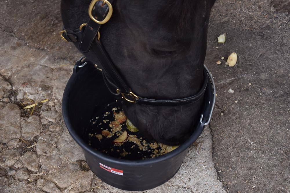 recette goûter cheval