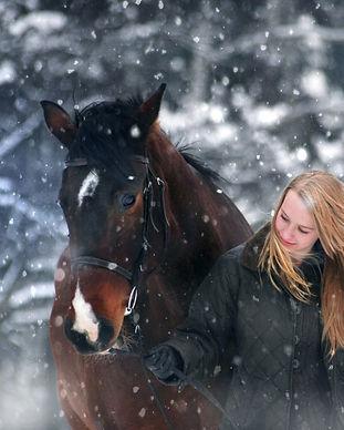 winter-wonderland-3821448_1920.jpg