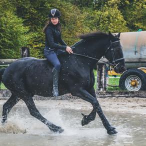 15 idées pour varier les plaisirs avec son cheval