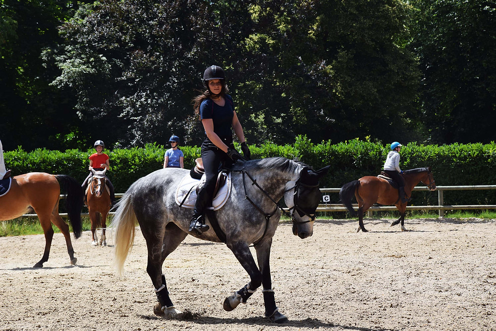 avis-tee-shirt-revolution-horse-pilot