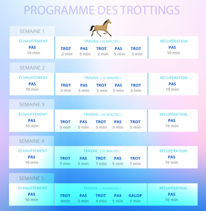 programme trotting cheval