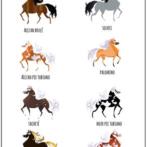 #galop 5 - Les robes du cheval