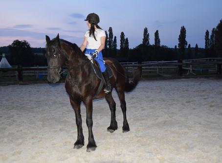 Pantalons d'équitation : mes tops et mes flops !