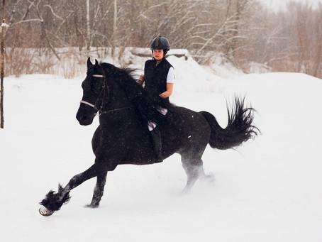 Affronter le froid : côté cavalier