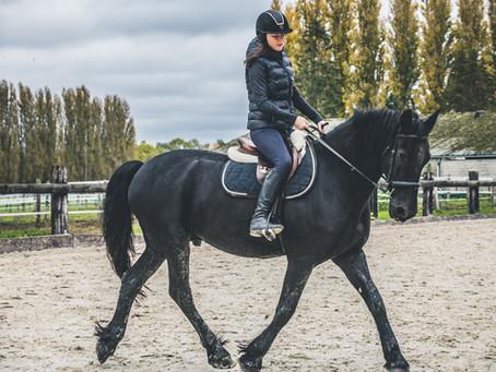 Travailler l'impulsion d'un cheval froid aux jambes