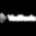 VueTronic_logo.png