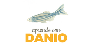 Danioprueba.fw.png