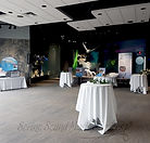 Aurora Borealis Theatre in the Gateway to the Arctic