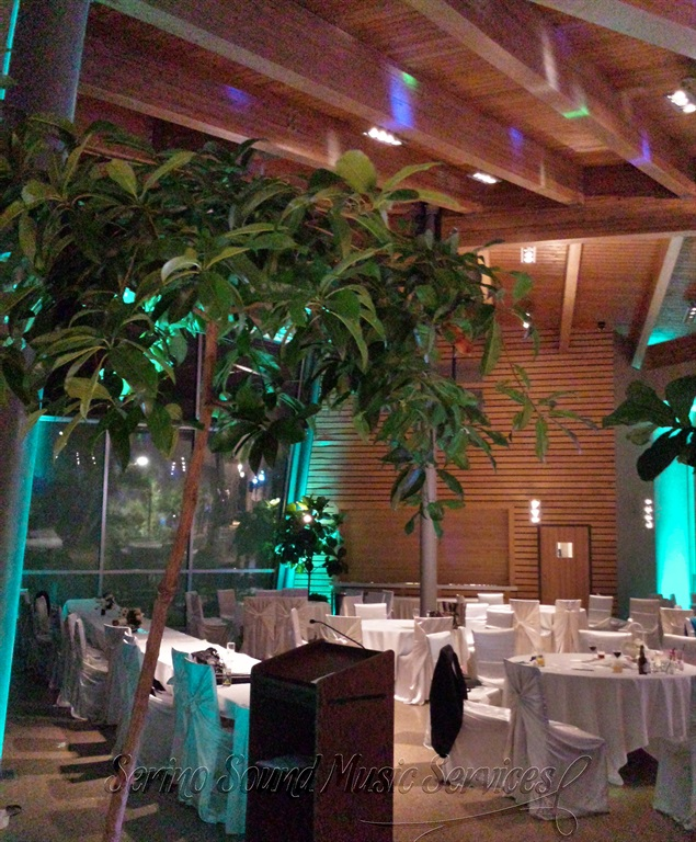 Wedding reception with teal accents