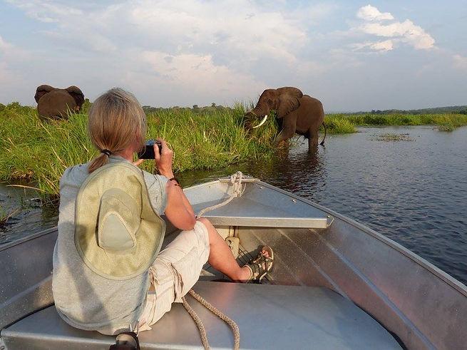 africa - elephant spotting.jpg