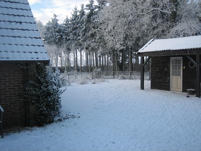 dalen winter