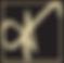 CSP-logo-initials.png