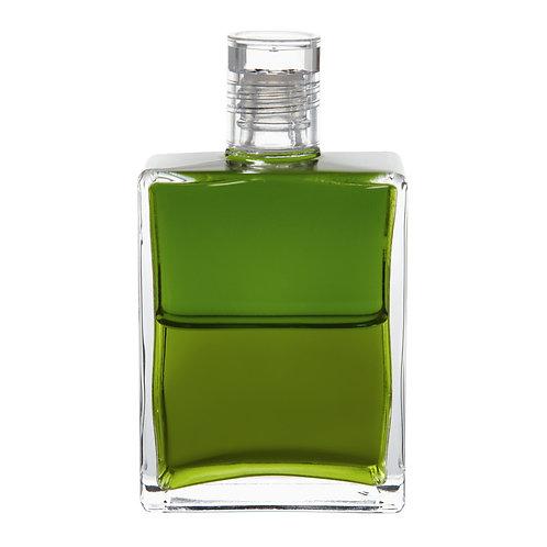Bottle #91 Feminine leadership of the heart - Olive/Olive