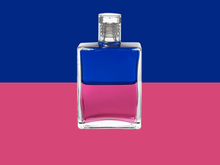 Queen Mab B116 - Royal Blue / Magenta Born 14th January, 2019 at 14:00pm GMT