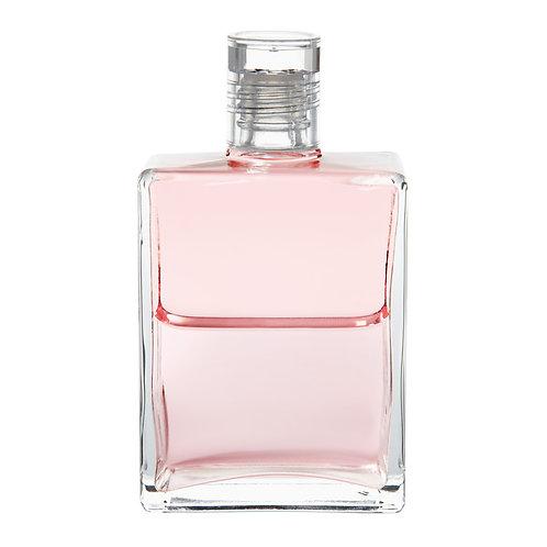Bottle #52 Lady Nada - Pale Pink/Pale Pink
