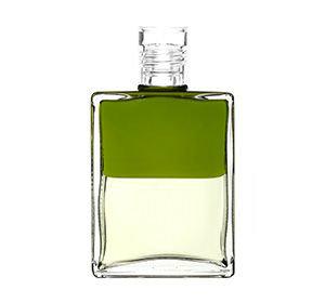 Inner Alchemy Bottle A4 - Olive/Light Lemon