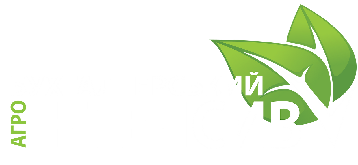 лого_интенсив_гот — копия (2).png