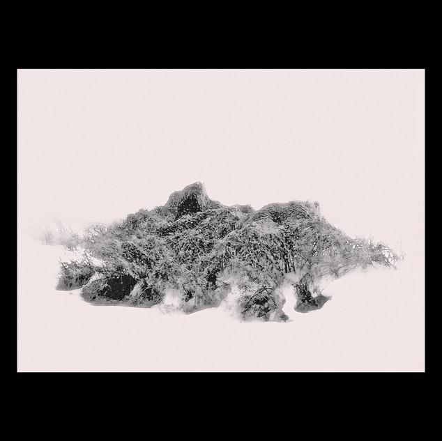 Wix Archive Snow GhostsFinal.jpg