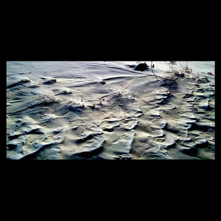 Wix Archive Ripples and Shadows 2.jpg